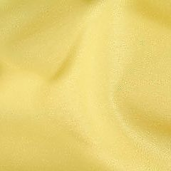 07_lemon_polyester-1.jpg
